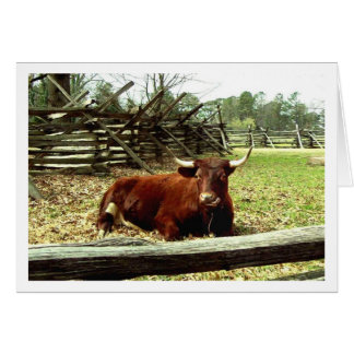 Ox in the Pasture Card