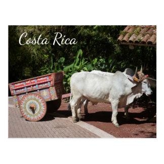Oxcart, Costa Rica Postcard