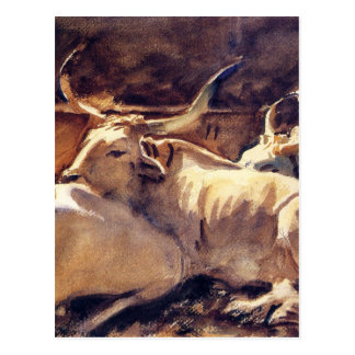 Oxen in Repose by John Singer Sargent Postcard