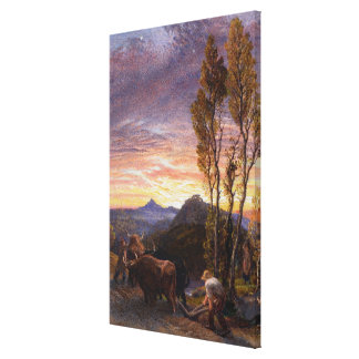 Oxen Ploughing at Sunset (w/c on paper) Canvas Print