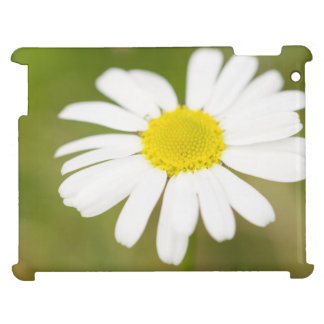 Oxeye Daisy iPad Case