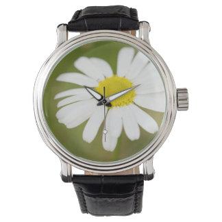 Oxeye Daisy Wrist Watch