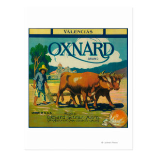 Oxnard Orange LabelOxnard, CA Postcard