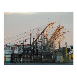 Oyster Boats Postcard