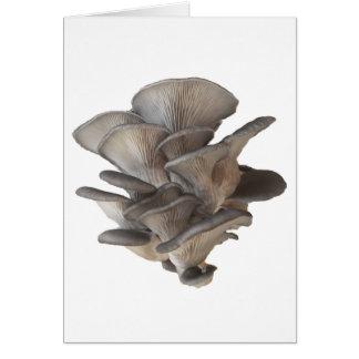 Oyster Mushroom Card