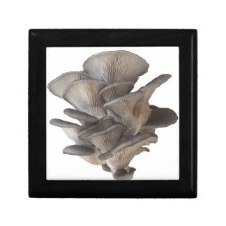 Oyster Mushroom Gift Box