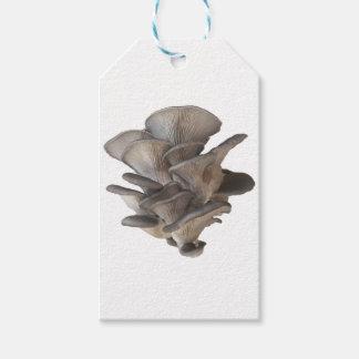 Oyster Mushroom Gift Tags