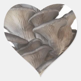 Oyster Mushroom Heart Sticker