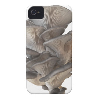 Oyster Mushroom iPhone 4 Case-Mate Cases