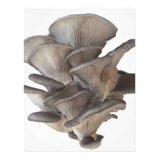 Oyster Mushroom Letterhead