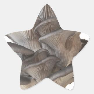 Oyster Mushroom Star Sticker