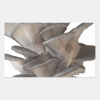 Oyster Mushroom Sticker