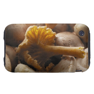 Oyster mushrooms, shiitake mushrooms, chestnut iPhone 3 tough covers