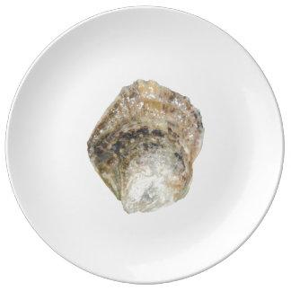 Oyster Porcelain Plate - Design B