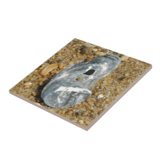 Oyster Shell in Pebble Sand Tile
