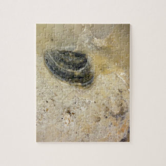 Oysters Jigsaw Puzzle