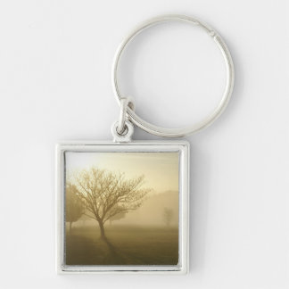 Ozarks Misty Golden Morning Silver-Colored Square Keychain
