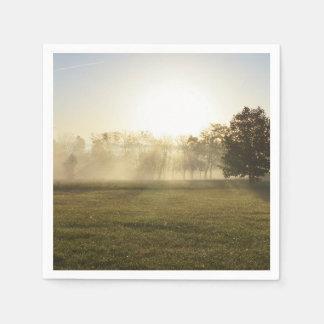 Ozarks Morning Fog Disposable Napkin