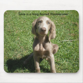 P3091298, Love is a long haired Weimaraner Mouse Pad