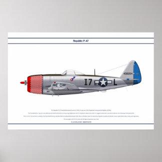 P-47D 493FS USAAF POSTER
