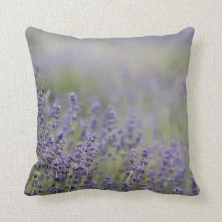 © P Wherrell Beautiful photo purple lavender field Throw Pillow