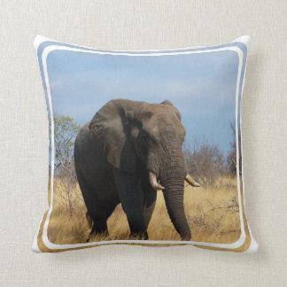 Pachyderm Pillow