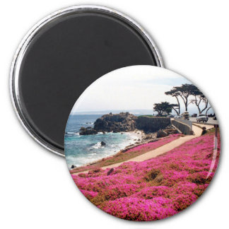 Pacific Grove-Monterey Calif Magnet