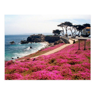 Pacific Grove-Monterey Calif Postcard
