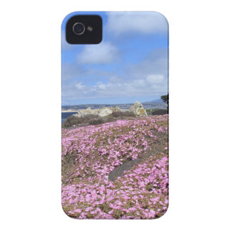 Pacific Grove Purple Carpet iPhone 4 Covers