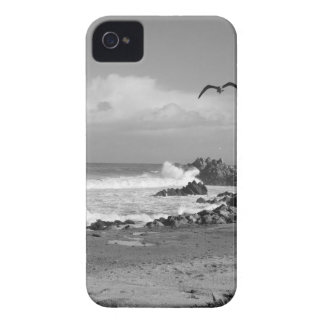 Pacific Grove Storm in Black & White iPhone 4 Cases