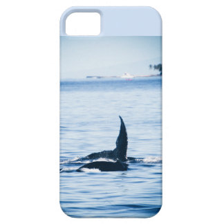 Pacific Humpback Whale Tails iPhone 5 Cover