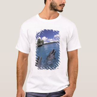 Pacific, Micronesia, Palau, Bottlenose T-Shirt