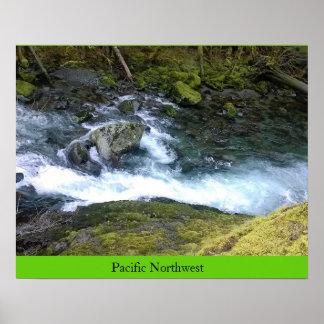 Pacific Northwest Rushing Water Poster