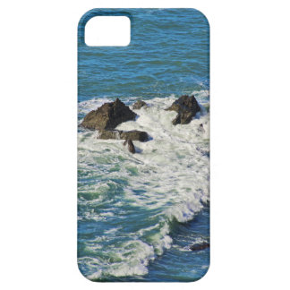 Pacific Ocean in Motion Case For The iPhone 5