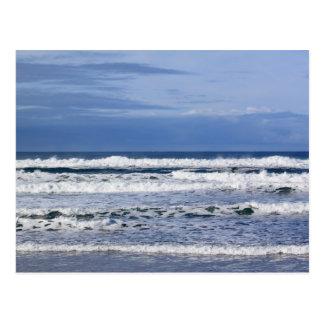 Pacific Ocean Powerful Waves Postcard
