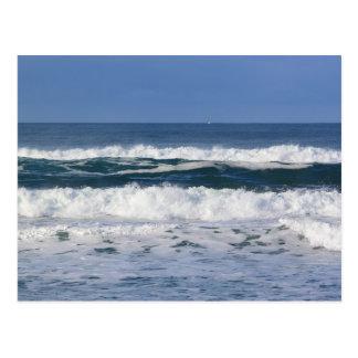 Pacific Ocean Waves Postcard
