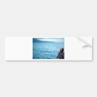 pacific pelican bumper sticker
