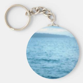 pacific pelican keychain