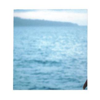 pacific pelican notepad