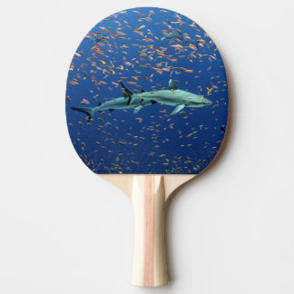 Pacific Reef Sharks Ping Pong Paddle