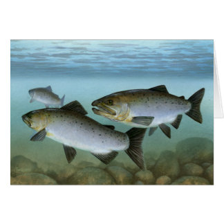 Pacific Salmon Painting Blank Card