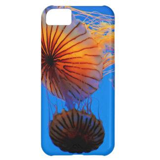 Pacific Sea Nettle (Chrysaora Fuscescens) iPhone 5C Case