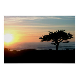 pacific sunset 20x30 poster