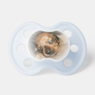 Pacifier with Dachshund reason