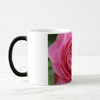 Pack Morphing Pink Macro Magic Mug