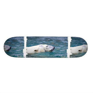 Paddling Polar Bear Skate Board