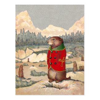 Paddy Paws in Prairie Dog Town Postcard