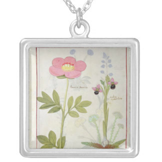 Paeonia or Peony, and Orchis myanthos Silver Plated Necklace