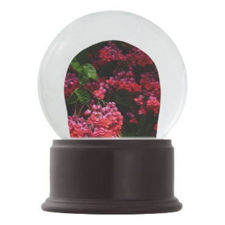 Pagoda Flowers Colorful Red and Pink Floral Snow Globe