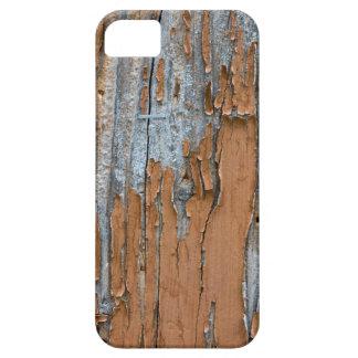 Paint Art Designed iPhone 5 Cases